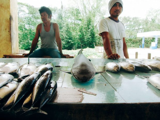 At the Panglima Sugala wet market, a small reef shark goes for sale for P150.